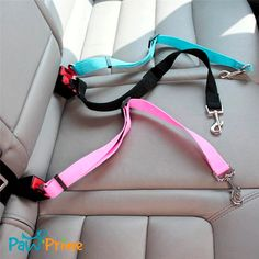 Paw Prime's Doggy Seatbelt's