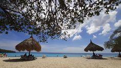 Cas Abou is het mooiste strand van Curacao. Geniet van de parelwitte stranden, Azurblauwe zee en ga snorkelend opzoek naar aalen en kleurrijke vissen. Tours, Patio, Cas, Outdoor Decor, Terrace