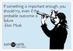 If something is important enough, you should try, even if the probable outcome is failure -Elon Musk