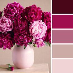 Pink Color Palettes, Burgundy Colour Palette, Pink Color Schemes, Pink Palette, Colour Pallette, Peony Colors, Pink Paint Colors, Pink Flowers, Colours