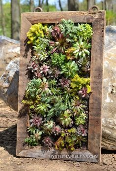 succulent hanging boxes   Succulent Wall Planter   How to Build a Vertical Garden ...