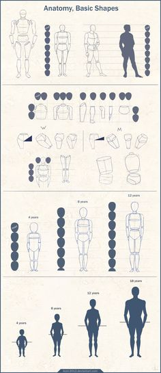 #drawing Anatomy Basic Shapes by Azot-2012.deviantart.com