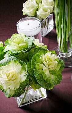 Miniature cabbages accompanied by white roses for an elegant indoor arrangement