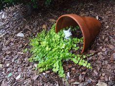 23 vasos que derramaram suas flores transformando-as em arroios de pintura 22