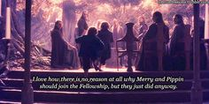 I love how there is no reason at all why Merry and Pippin should join the fellowship, but they just did anyway.