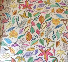 Coloured leaves | Johanna Basford's Secret Garden colouring book