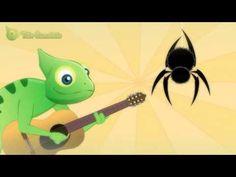 Dona Aranha - Tião Camaleão - Música infantil