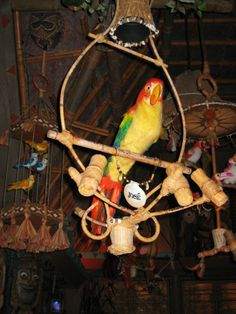 Anyone (not just Cast Members) can wake up Jose the macaw in the Enchanted Tiki Room. Simply ask the Cast Member in charge as you're entering, while the audience is being seated.