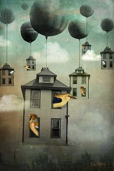 ♨ Intriguing Images ♨ unusual art photographs, paintings & illustrations - Birdhouse 2 by Catrin Welz-Stein