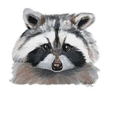Raccoon by Brooklyn