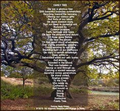 The Family Tree Poem by Patricia Neely-Dorsey - My Magnolia Memories and Musings in Poems  @2012 #poetry