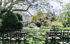 A beautiful Spring Garden Estate Wedding at Spicers Clovelly Estate with a blooming Jacaranda Tree and a beautiful Paul Hunt wedding dress. Hunting Wedding, Spring Garden, Bloom, Patio, Outdoor Decor, Beautiful, Terrace