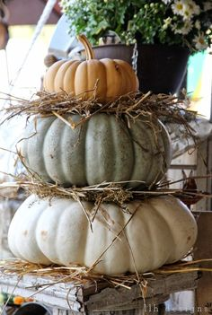 I saw these stacked pumpkins with the hay nestled between each layer, and I knew they had to find a way to our booth at the Country Living Fair next weekend!