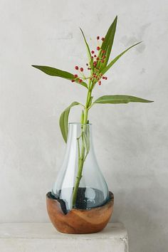 Slide View: Teak & Bottle Vase decorating ideas for the home interior design ideas living room decor apartment on a budget Farmhouse Living Room Furniture, Farmhouse Bedroom Decor, Living Room Decor, Recycling, Paint Colors For Living Room, Bottle Vase, Contemporary Bedroom, Bud Vases, Teak
