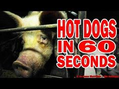 Hot Dogs in 60 Seconds Flat:  This Is How Hot Dogs Are Made, and It's Way Worse Than You Thought. You've probably heard of the gross things that make their way into hot dogs, but you might not have heard of what happens to those pigs before they become pork. Here's how it happens...