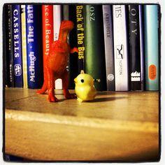 Rumble in the jungle. Or bookshelf. - @clarkissimo- #webstagram