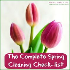 Mums make lists ...: The Complete Spring Cleaning Check-list