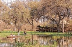 Khwai Tented Camp - Khwai Concession - Botswana Safaris. Set on a small flooded lagoon off the main Khwai Channel, this rustic bush camp offers great game drives in this very prolific wildlife area.
