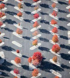 Egy férfi készítette ezeket a képeket egy repülőgépről. Amit ott látott, az…