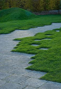 Beautifully designed juxtaposition of pavers & very lush grass designed by Philadelphia landscape design firm 1234 site design. via the design firm's site