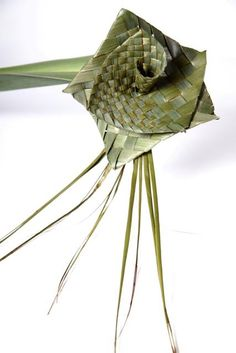 Natural collection - Flax Weaving, Flax Flowers, Culture, Natural, Collection, Maori, Linen Fabric, Nature, Au Natural