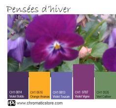 Le Violet Vigne et le #violet en général, dans toutes ses tonalités est la #vedette dès ce début d'année 2017! Découvrez la palette de couleurs CHROMATIC sur www.chromaticstore.com et trouvez le violet qui vous va !