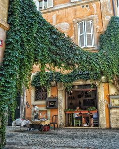 Roma, Trastevere ♠ photo by ( Piazza Navona, Rome Travel, Italy Travel, Rome Photography, Italian Summer, Take Me Home, Best Cities, Holiday Travel, Beautiful Places