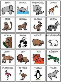 Чехия - идеальная страна! Учим язык вместе! Baby Time, Exotic Pets, Teaching English, Montessori, Activities For Kids, Comics, Beehive, Study, Tatoo