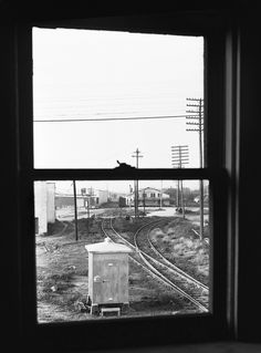SCL window view to South from the second floor of the former out of service SAL freight station at Plant City, Florida, mid 1970's | by alcomike43