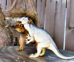 """HEY DINO! Gimme a big wet one!"" #Kissies"