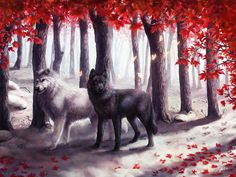 Painting By Numbers Frameworks Coloring By Numbers Home Decor Pictures Animal Dog Decorations Anime Wolf, Fantasy Wolf, Fantasy Art, Wolf Artwork, Wolf Love, Wolf Pictures, Beautiful Wolves, Wolf Spirit, Fantasy Creatures
