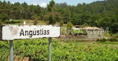 Há lugares em Portugal com os nomes mais estranhos que possamos imaginar. Sabe onde ficam, por exemplo, Vila Nova do Coito, Vale da Rata ou Picha?