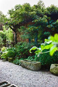 Lithéns trädgård: Löddeköpinge plantskola