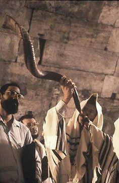 Shofar en el Muro el sonido del shofar es tan misterioso. Se pone a la derecha en el centro de su ser - incluso si usted no es judío - y te obliga a recordar lo insignificante que eres en realidad en el mundo