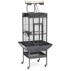 Everila New Bird Parrot Cage 18x18x61 Bar Spacing 3/4 Playtop Conure Cockatiel
