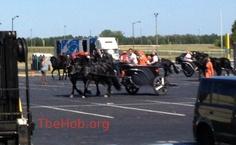 Carruajes y caballos en el set de Catching Fire en Atlanta Speedway
