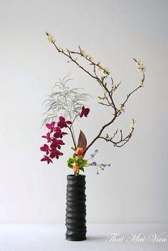 Designed by Mai Thai Van