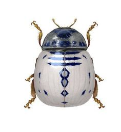 More Than 44 Richard Wilkinson Richard Wilkinson richard wilkinson richard wilkinson richard wilkinson richard wilkinson richard wilkinson richard wilkinson Cool Insects, Bugs And Insects, Beetle Insect, Insect Art, Beautiful Creatures, Animals Beautiful, Cute Animals, Cool Bugs, Bug Art