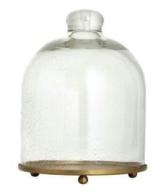 Glass dome h&m £12.99
