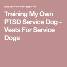 Training My Own PTSD Service Dog - Vests For Service Dogs
