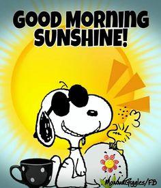 good morning * good morning quotes - good morning - good morning quotes for him - good morning quotes inspirational - good morning wishes - good morning beautiful - good morning quotes funny - good morning images Peanuts Cartoon, Peanuts Snoopy, Snoopy Hug, 9gag Funny, Funny Memes, Funny Quotes, Fun Funny, Super Funny, Quotes Quotes