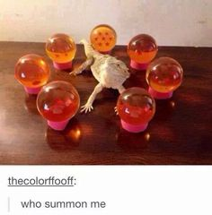 When they actually got a photo of Shenron IRL: | 19 Hilarious Tumblr Posts Only Anime Fans Will Get