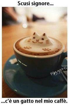 Non dire gatto... se non ce l'hai nella tazza!