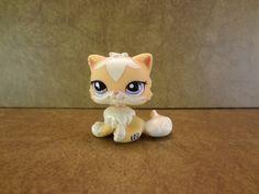 #1657 Persian Cat 2007