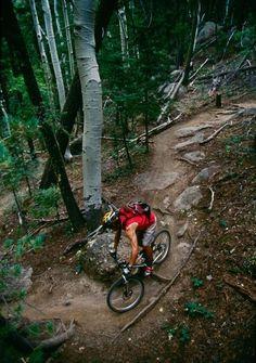 Flagstaff, AZ - tons of trails for mountain biking!