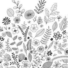 Black & white flowers laser cutter doodle art, drawings y do Botanical Line Drawing, Floral Drawing, Drawing Flowers, Black And White Flowers, Black And White Drawing, Black White, Doodle Designs, Doodle Patterns, Doodle Inspiration