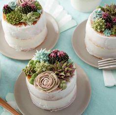 Succulent decoration!