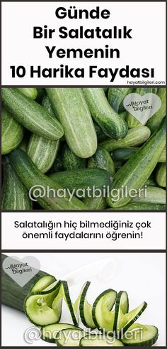Günde Bir Salatalık Yemenin 10 Harika Faydası Learn about the very important benefits of cucumber you never knew! Nutrition Plans, Nutrition Tips, Health And Nutrition, Health Care, Healthy Food To Lose Weight, How To Stay Healthy, Athlete Nutrition, Cucumber Benefits, Best Fat Burning Foods