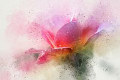 """O'connor Rose Abstract by Terry Davis   Congratulations to Terry our 1st place finisher in the Fine Art America Group """"Images That Excite You"""" contest!"""