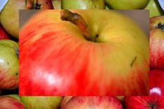 #Täysin arkista #omena #apple #äpple #valokuvaus #photography #fotografering